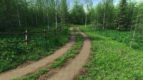La route de village passe dans toute la forêt dans l'heure d'été Image stock