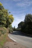 La Route du Mimosa Immagini Stock