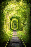 La route du rail Photographie stock libre de droits