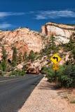 La route en Zion Canyon Image libre de droits