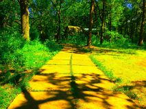 La route jaune de brique le magicien d'Oz Image stock