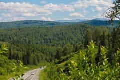 La route parmi les bois Image libre de droits