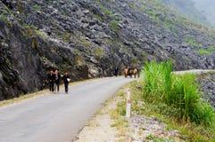 La route sur le pierre-plateau de Dong Van, Viet Nam Images libres de droits