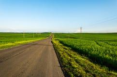 La route sur un champ vert Images libres de droits