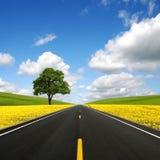 La route vers l'avant Photographie stock libre de droits