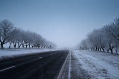 La route vide pendant l'hiver, la terre et les arbres a couvert la neige Image libre de droits