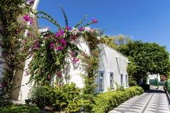 La rue turque de Tipical avec la maison blanche et la bouganvillée fleurissent photo stock