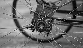 La rueda de gana Imagen de archivo libre de regalías
