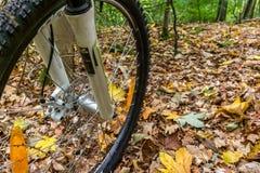 La rueda delantera de una bici de montaña con los frenos de disco y suspensi Fotografía de archivo