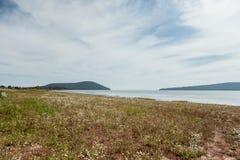 La Russia Bratsk prato della riva da 2014 mattine Fotografie Stock Libere da Diritti