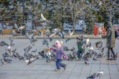 La Russia, Chabarovsk, quadrato di Lenin: Gioco di bambini con i piccioni immagine stock
