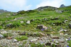 La Russia, paesaggi di estate della riserva caucasica di biosfera in tempo nuvoloso fotografia stock libera da diritti