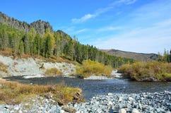 La Russia, Repubblica di Altai, distretto di Ust-Koksinsky, fiume di Acchan Akchan a settembre Fotografie Stock