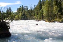 La Russia, Repubblica di Altai Immagini molto belle della natura in alte montagne innevate di Altai, fiumi veloci e rumorosi dell Immagine Stock