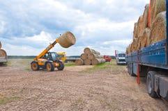 LA RUSSIE 6 SEPTEMBRE : Cultivez les opérations en septembre 6,2014 dans Bryanskaya Oblast, Russie Images stock