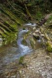 La Russie, Sotchi Autumn Forest Mountain River image libre de droits