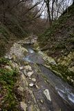 La Russie, Sotchi Autumn Forest Mountain River images libres de droits