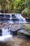 La sérénité tombe au parc de forêt tropicale de Buderim image stock