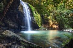 La sérénité tombe au parc de forêt tropicale de Buderim photographie stock libre de droits