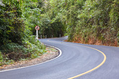 La S ha curvato la vista della strada asfaltata nella foresta Fotografia Stock