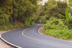 La S ha curvato la vista della strada asfaltata nella foresta Immagini Stock