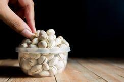 'La s umana raccoglie a mano sul pistacchio Immagine Stock