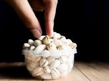 'La s umana raccoglie a mano sul pistacchio Immagini Stock Libere da Diritti
