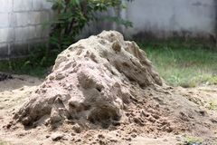 La sabbia Immagine Stock Libera da Diritti