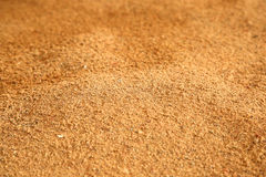 La sabbia Immagine Stock