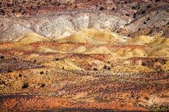 La sabbia bianca dipinta dell'arenaria dell'erba arancio del deserto incurva il cittadino Fotografie Stock Libere da Diritti