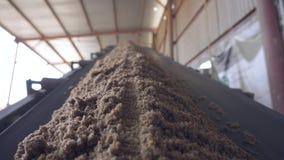 La sabbia ? consegnata dal trasportatore Sabbia sul trasportatore stock footage