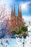 La Sagrada Familia. Basilica La Sagrada Familia at spring with flowers and pond, many years under constructions, cleaned digitally, Spain, Barcelona march 2013 Stock Photography