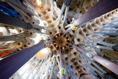 La Sagrada Familia, interior. BARCELONA, SPAIN – June 13: La Sagrada Familia - the ceiling of the cathedral designed by Gaudi, which is being build since 19 Stock Photos