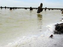 La sal establece en todo que cae en el agua del lago Foto de archivo libre de regalías