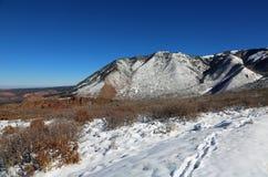 La Sal Mountains Stock Image