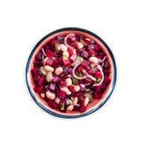 La salade avec les haricots de betterave et nains et les conserves au vinaigre s'est habillée avec de la sauce à vinaigrette images libres de droits