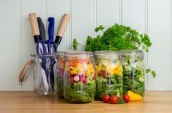 La salade dans le stockage en verre cogne sur le plan de travail de cuisine image libre de droits