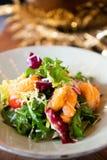 La salade de crevette a bien plaqué le haut plan rapproché suivant un régime sain asiatique de légumes-feuilles de cuisine photographie stock