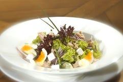 La salade de thon Images libres de droits