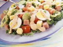 La salade du chef frais Photos libres de droits