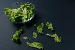 La salade fra?che part dans la cuvette images libres de droits