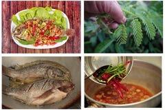 La salade frite épicée et aigre de Tilapia avec le tamarinier de bébé part Image stock