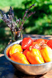 La salade rouge et jaune poivre dans la marinade pour griller et un bouquet de lavande sur la table d'été Photo libre de droits