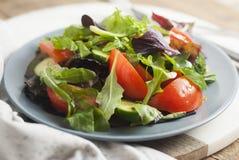 La salade verte fraîche avec des verts de mélange part des épinards, Augula, Basil, laitue, tomatoe, concombre Style rustique, fo images libres de droits