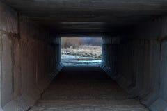 La salida del Booker al aire fresco, foto de archivo libre de regalías
