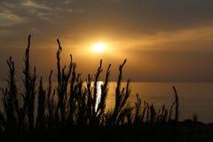 La salida del sol Fotografía de archivo libre de regalías