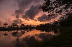 La salida del sol con la reflexión del agua con el árbol de la silueta imagen de archivo