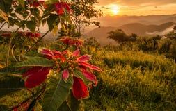 La salida del sol de la mañana en las montañas en Tailandia Fotografía de archivo