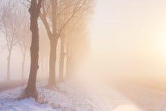La salida del sol del invierno de niebla en los Países Bajos Imágenes de archivo libres de regalías