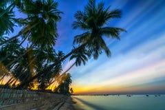 La salida del sol en la playa tropical con el sol irradia la perforación a través de las palmeras del coco foto de archivo